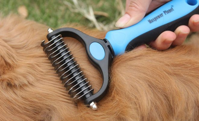 Maxpower Planet Pet Grooming Brush - Double Sided Shedding and Dematting Undercoat Rake Comb for Dogs and Cats