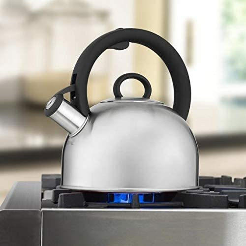 Silver Stainless Steel Stovetop Tea Kettle
